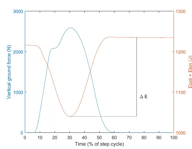 Pinnan tukivoima ja mekaaninen energia yhden juoksuaskeleen yli